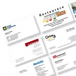 Business cards 90 x 50 mm